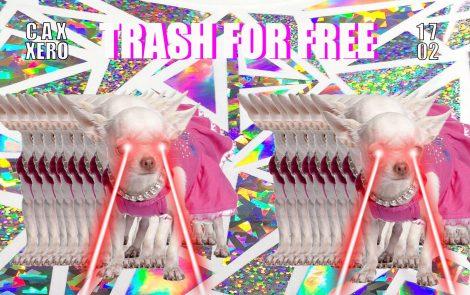 Trash For Free