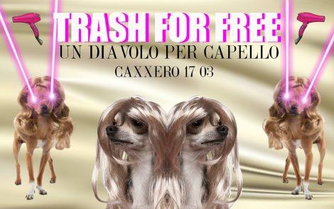 Trash For Free – Un diavolo per capello edition